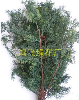 仿真柏树枝,松树枝图片